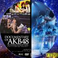 DOCUMENTARY OF AKB48 NO FLOWER WITHOUT RAIN 少女たちは涙の後に何を見る?(DISC・2)