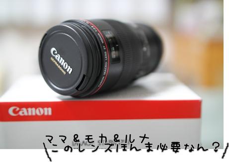 20120809(2).jpg