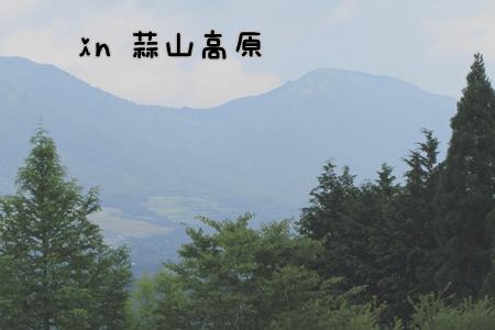 20120817(1).jpg