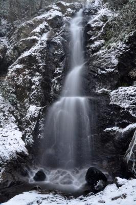 1白糸の滝14.01.10