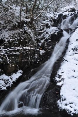 2白糸の滝14.01.10