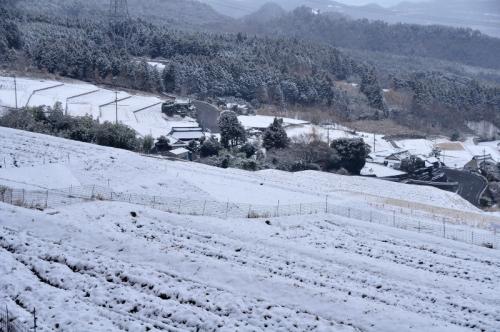 9白糸の滝14.01.10