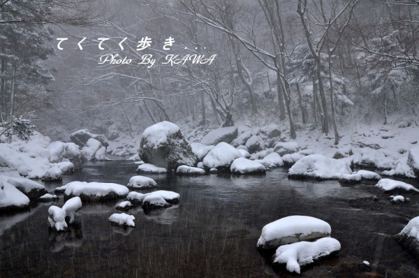 小田深山20140121
