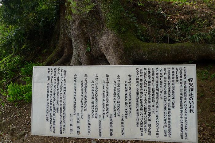 鹿児島 蛭子神社 4