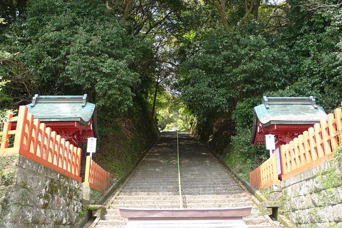 薩摩川内市 新田神社 5