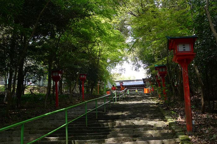 薩摩川内市 新田神社 9