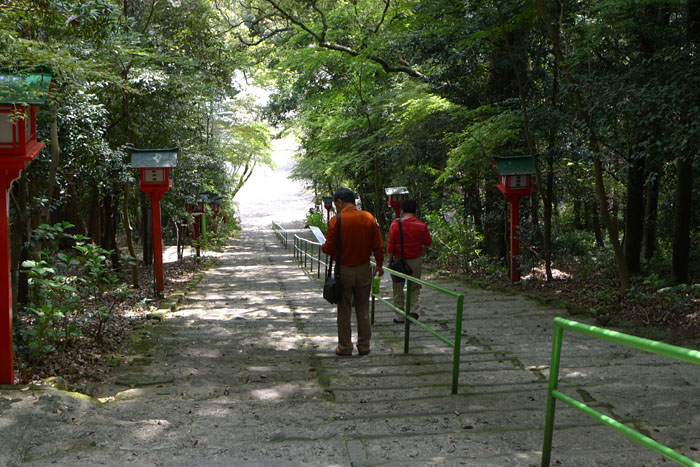 薩摩川内市 新田神社 7