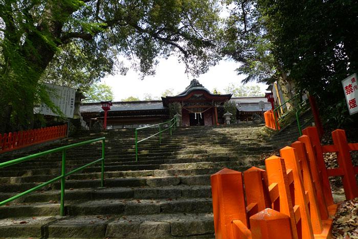 薩摩川内市 新田神社 12