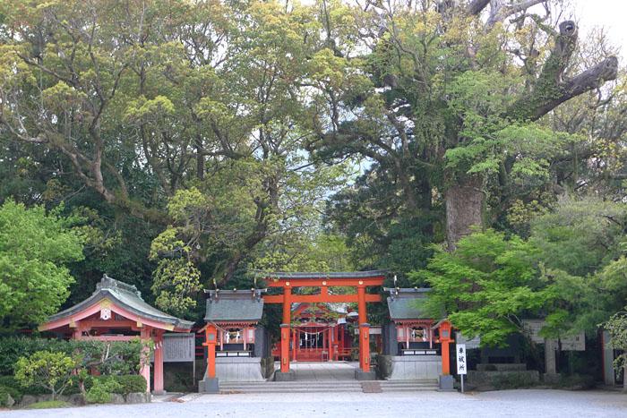指宿市 枚聞神社 3
