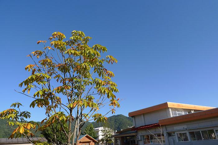 台風一過 2013 october