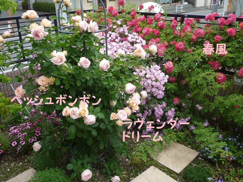 20130521hokutouniwa4.jpg