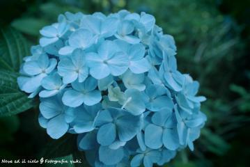 15_20120329211057.jpg
