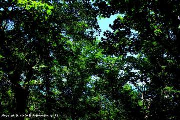 24_20120320194204.jpg
