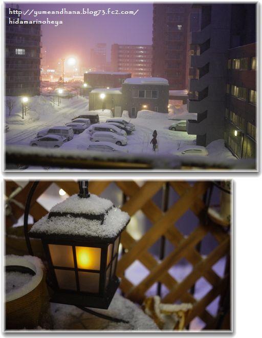 今日も雪1303201