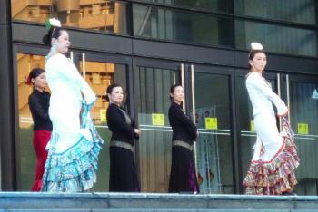 フラメンコ舞踊団