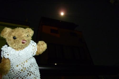 月&テディベア