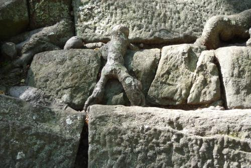 石段を登る小人?