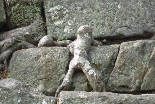 石段を登る小人
