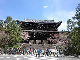 京都 春  098