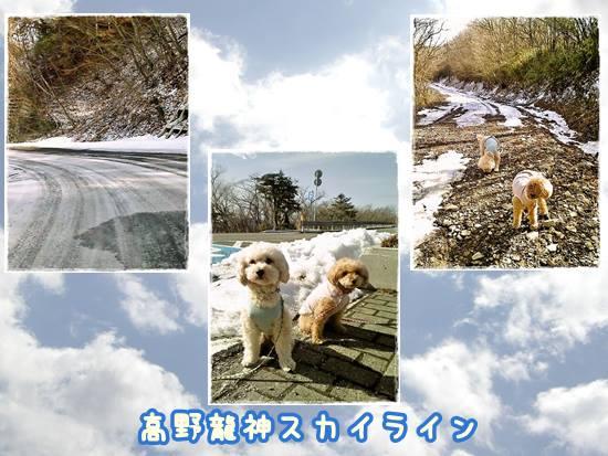 田辺梅林5