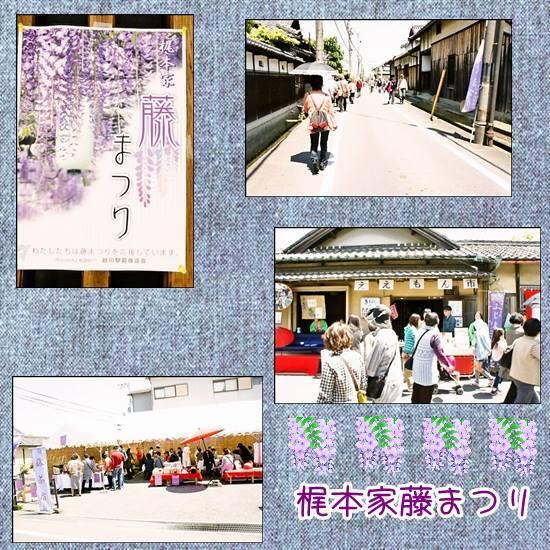 cats93 550-550梶本家藤祭り2