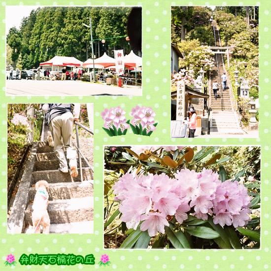 花の郷 滝谷花しょうぶ園2
