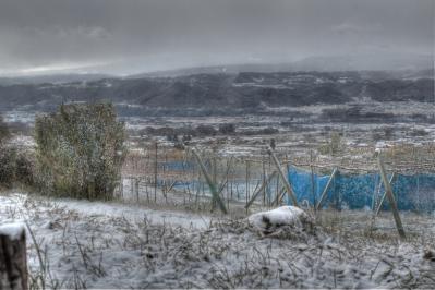 東御市 雪