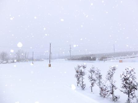 湯楽里館駐車場 雪