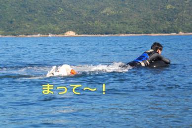 DSC_8246_640.jpg