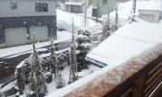 2012-03-19 なごり雪