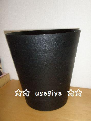 2012_0322_225122-P3220040.jpg