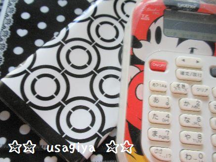 2012_1121_132657-PB210004.jpg