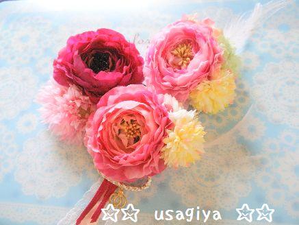 bbb_20120702201719.jpg