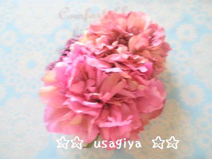 bbbb_20120702202050.jpg