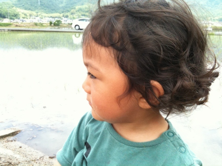 japan 2012 (14) (450x338)