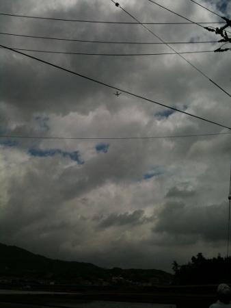 japan 2012 (8) (338x450)