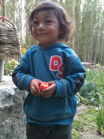 blog 2012 aug (10) (338x450)