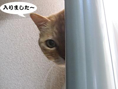 13_03_18_3.jpg