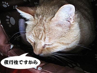 13_03_23_2.jpg