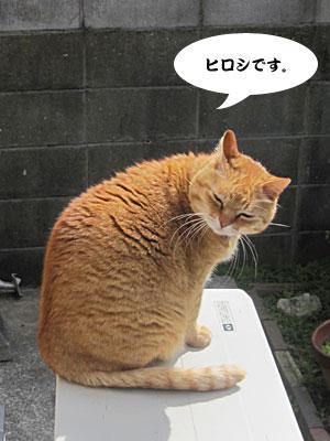 13_03_25_1.jpg