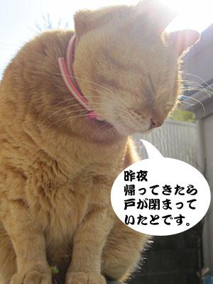 13_03_25_2.jpg