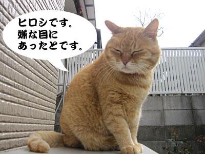 13_04_10_1.jpg