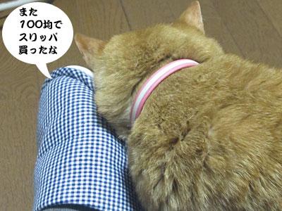 13_04_18_3.jpg