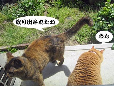 13_04_25_6.jpg