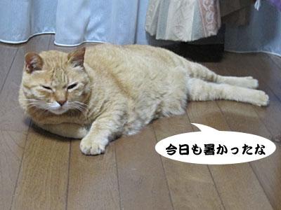 13_05_24_1.jpg