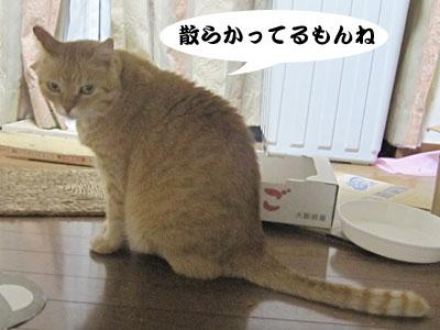 13_09_20_1.jpg