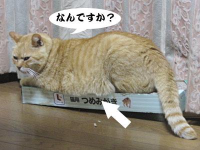13_10_08_1.jpg