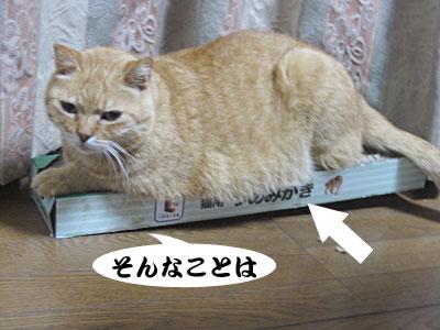 13_10_08_2.jpg