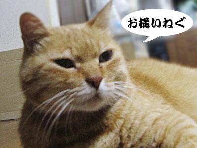 13_10_08_3.jpg