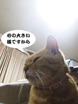 13_10_08_4.jpg